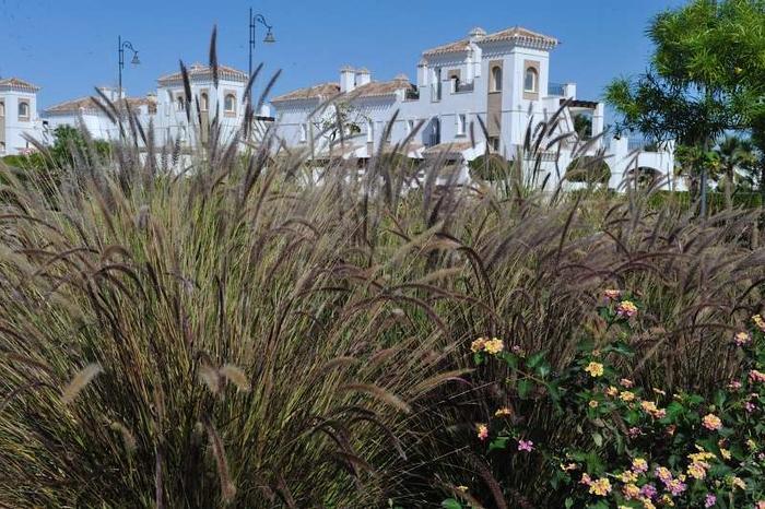 La Torre Golf Resort, Property