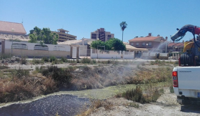 <span style='color:#780948'>ARCHIVED</span> - Mazarrón council fights the tiger mosquito in coastal areas