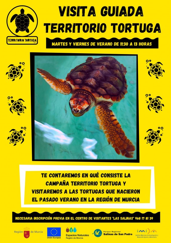 <span style='color:#780948'>ARCHIVED</span> - Free turtle tours running in San Pedro del Pinatar on Tuesdays and Fridays this summer