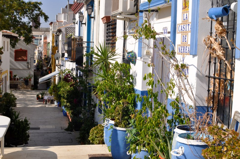 Morning out in Alicante route 2: El Parque de La Ereta and El Barrio de Santa Cruz