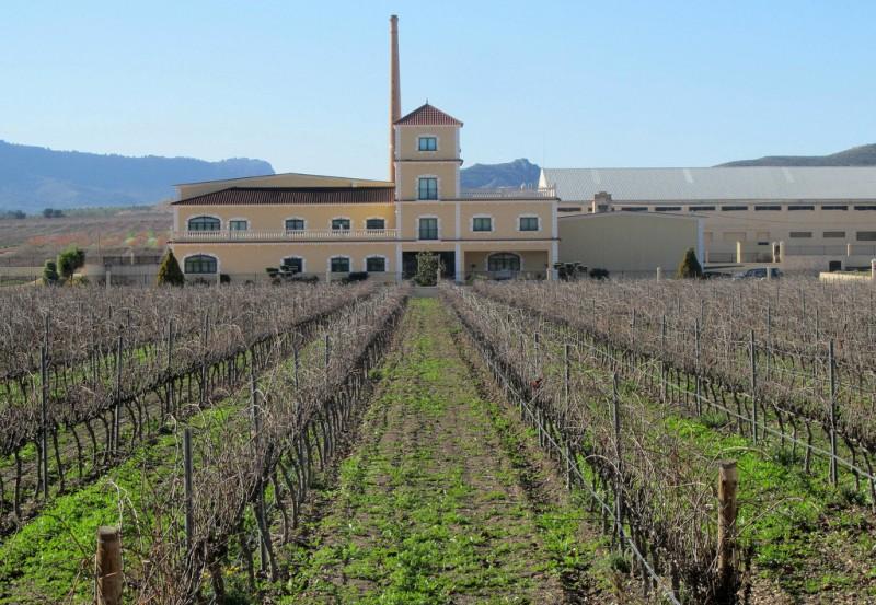 Jumilla wine route, Bodegas Bleda