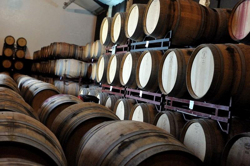 Jumilla wine route, Bodegas Carchelo