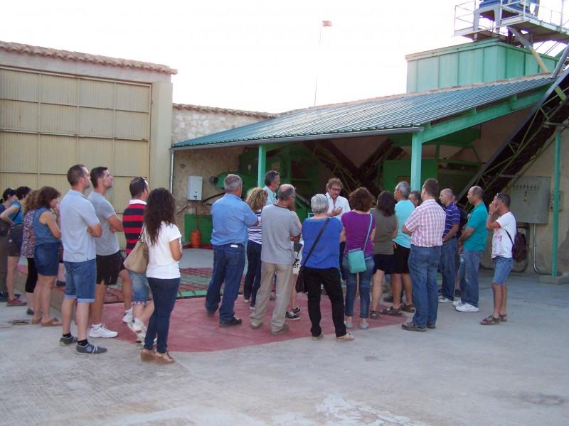 Jumilla wine route, Casa Pareja Organic Extra Virgen Olive Oil producer