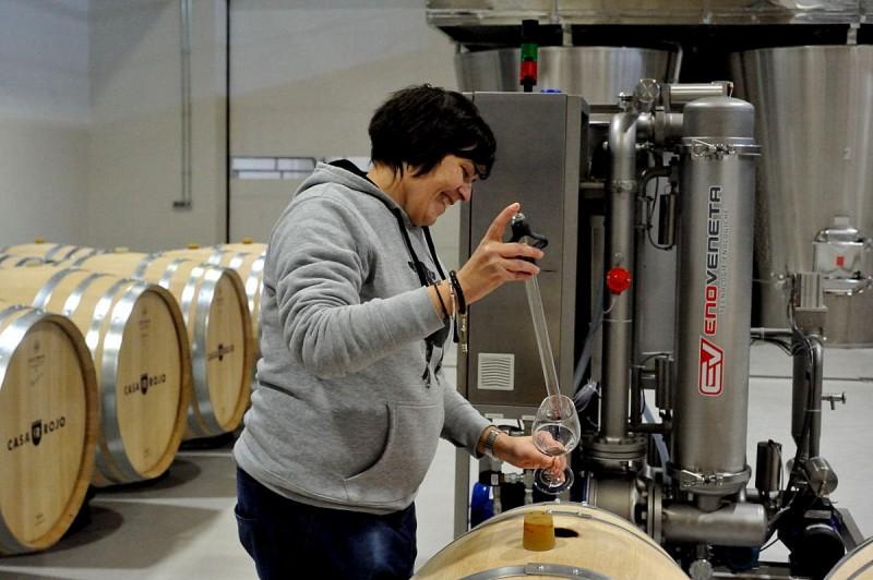 Jumilla wine route, Bodega Casa Rojo